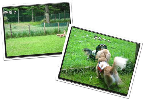 2010081506.jpg