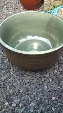 愛する猫ちんと船釣りと観光地めぐり-すいれん鉢