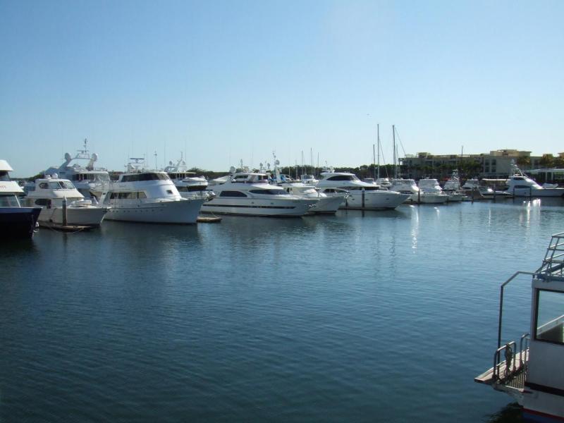 愛する猫ちんと船釣りと観光地めぐり-ゴールドコースト