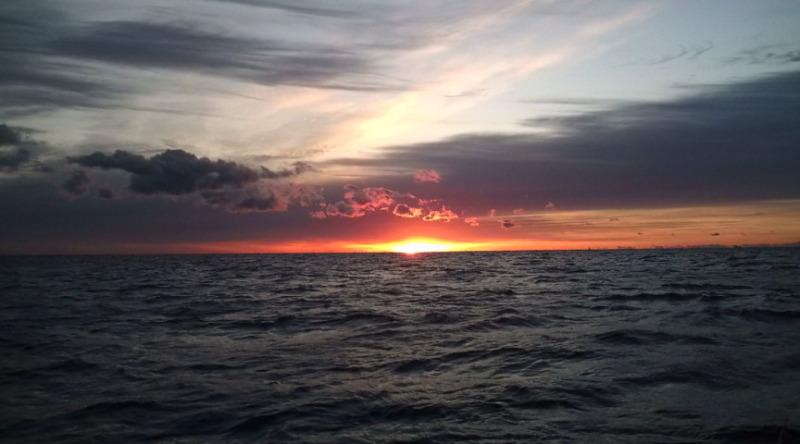 愛する猫ちんと船釣りと観光地めぐり-朝日