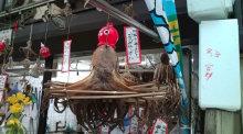 愛する猫ちんと船釣りと観光地めぐり-魚の棚