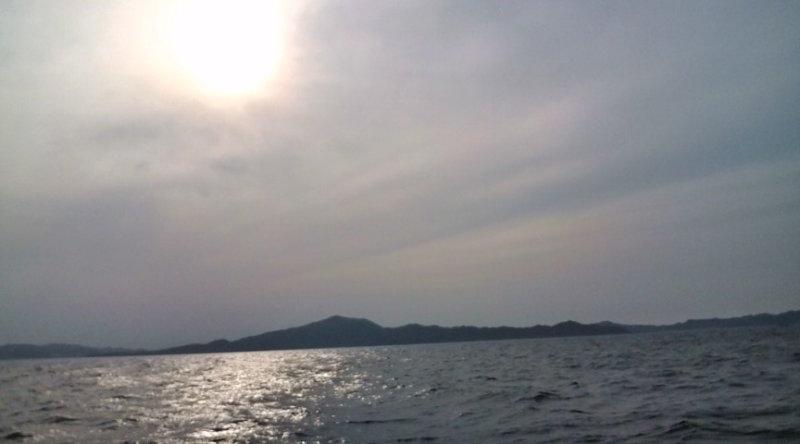愛する猫ちんと船釣りと観光地めぐり-空
