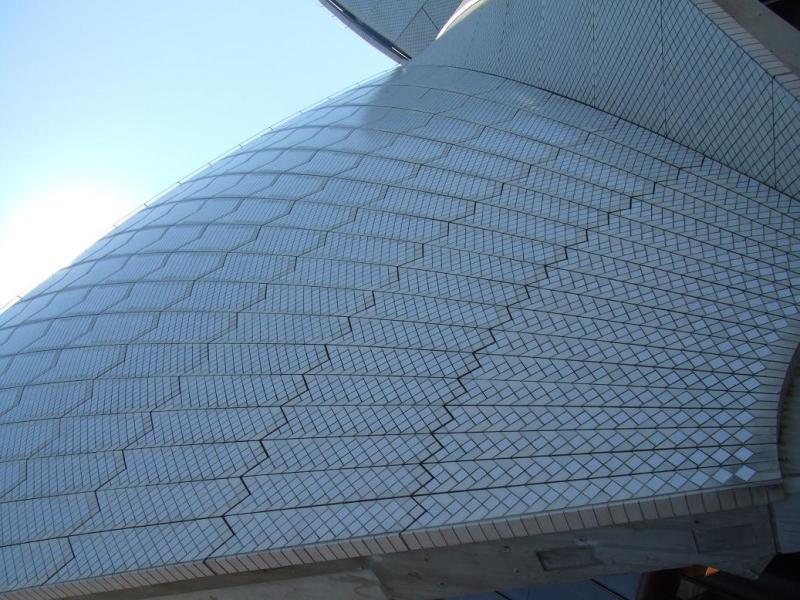 愛する猫ちんと船釣りと観光地めぐり-オペラハウスの屋根