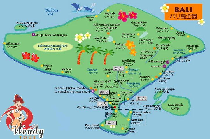 愛する猫ちんと船釣りと観光地めぐり-バリ島