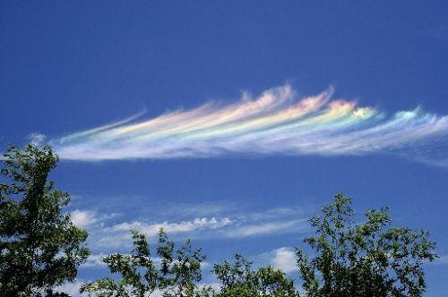 愛する猫ちんと船釣りと観光地めぐり-虹色の空