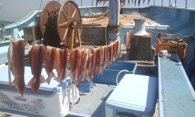 愛する猫ちんと船釣りと観光地めぐり-スルメイカ