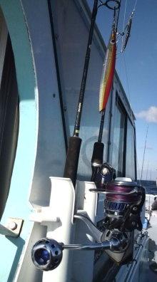 愛する猫ちんと船釣りと観光地めぐり-ソルティガ