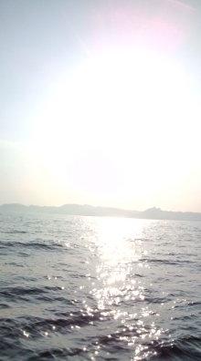 愛する猫ちんと船釣りと観光地めぐり-海