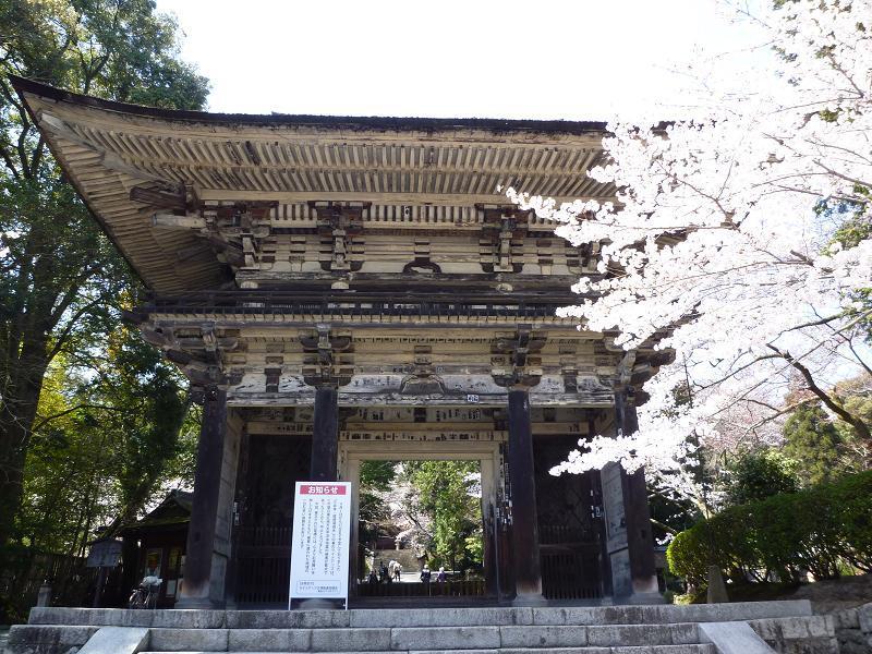 愛する猫ちんと船釣りと観光地めぐり-三井寺