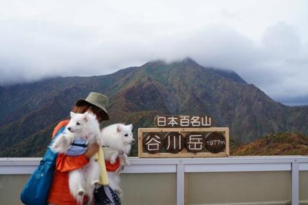谷川岳を臨む