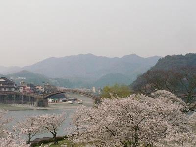 錦帯橋10