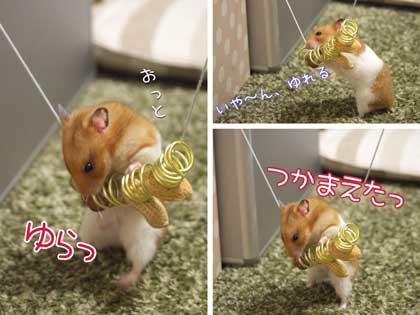 ナッツ食い1