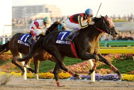 20101208-00000516-sanspo-horse-view-000.jpg