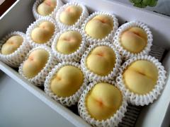 fruits201103.jpg