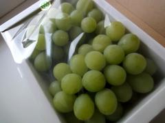 fruits201107.jpg