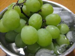 fruits201108.jpg