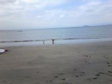 ラウラ 海 9 9 マル