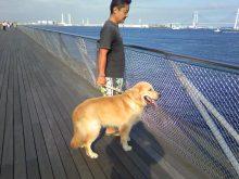 ラウラ 大桟橋 2