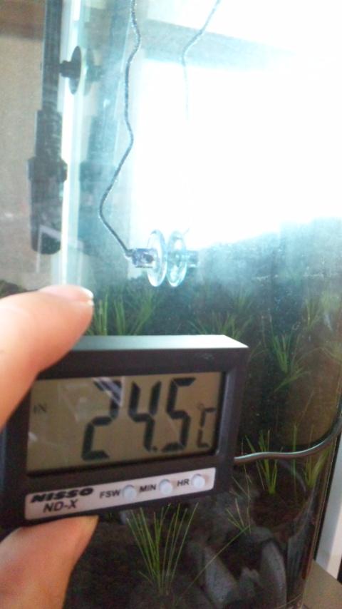新兵器、デジタル温度計