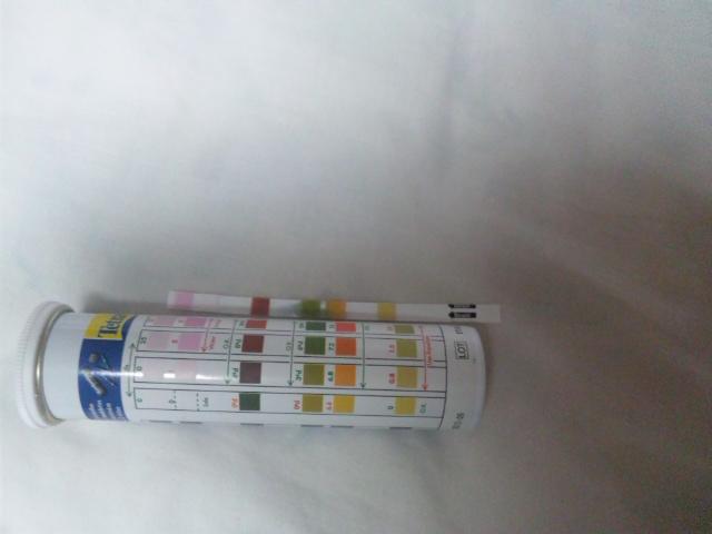 60cm水槽水質調査