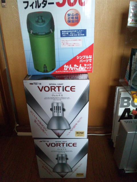 ヴォルテス購入