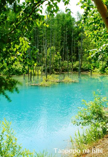ブルーna池