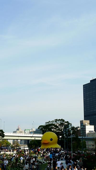 20111029-02.jpg