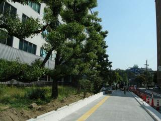 201110大阪11