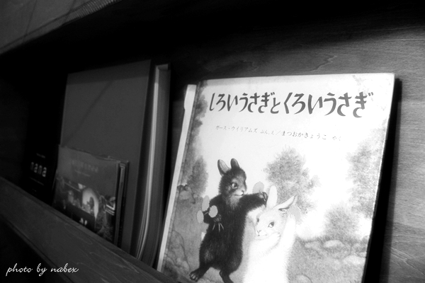 photo_490.jpg