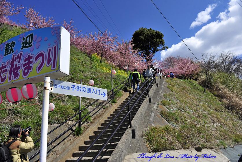 松田山へ2