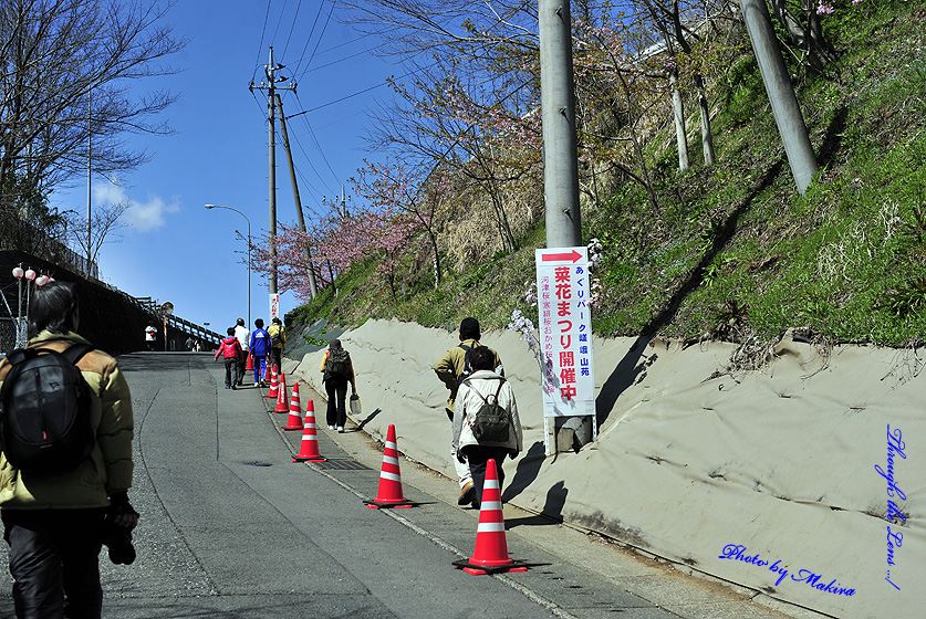 松田山へ1