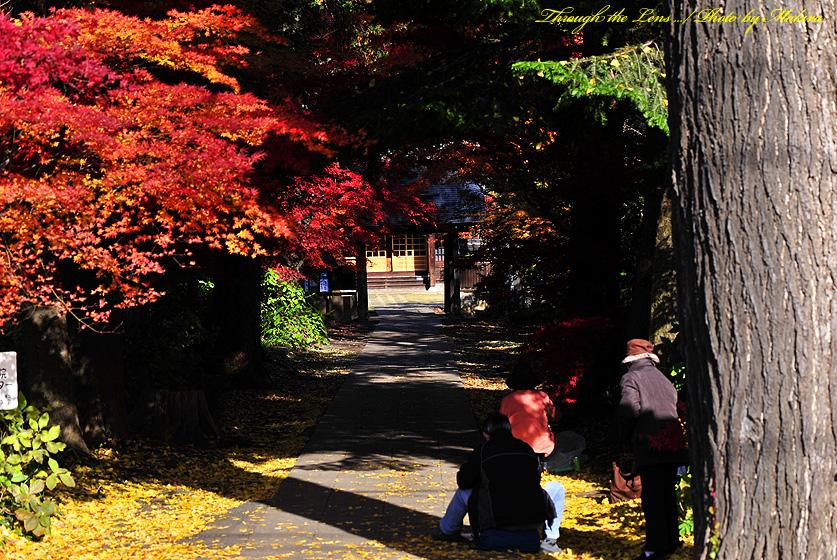 興禅院入口1