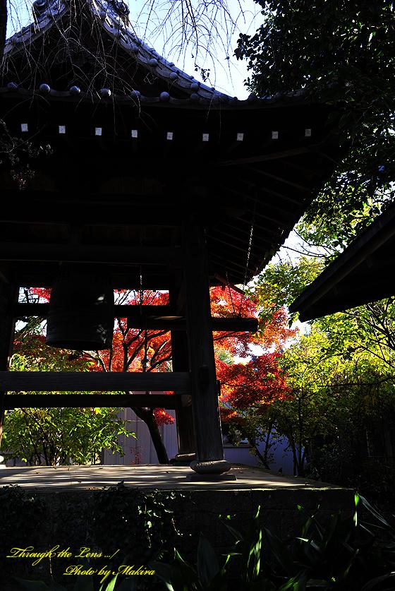 興禅院鐘堂と紅葉