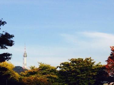 キャンパスからはソウルタワーが一望できました^^