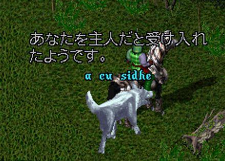 2011a003707.jpg