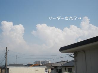 P8130497.jpg