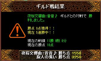 夜桜交響曲:音音♪