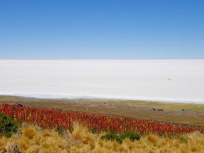 ボリビア|ウユニ塩湖5