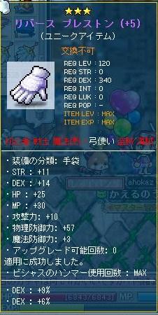Maple110106_120256.jpg