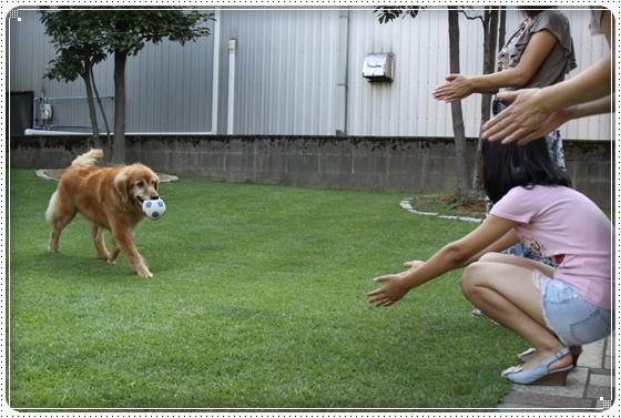 2010,9,5お庭遊び13