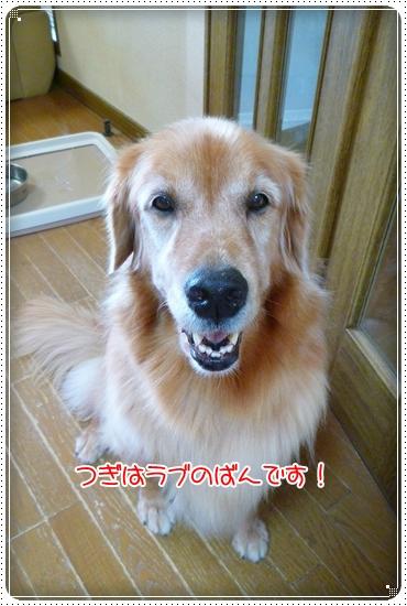 2010,9,14お散歩4