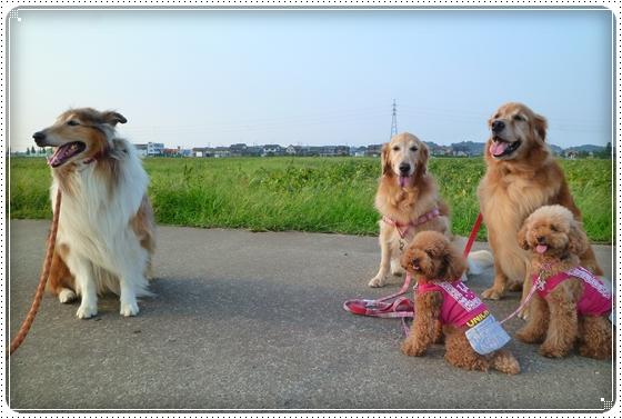 2010,9,21お散歩6