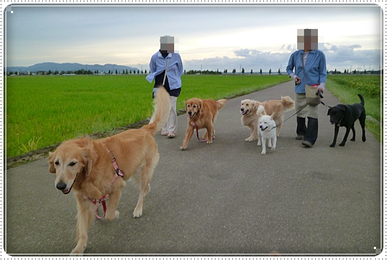 2010,9,24お散歩12