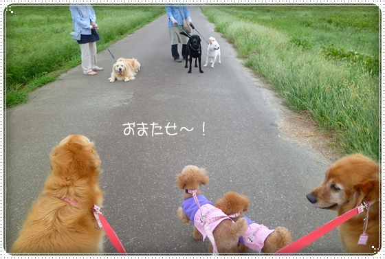 2010,9,24お散歩7