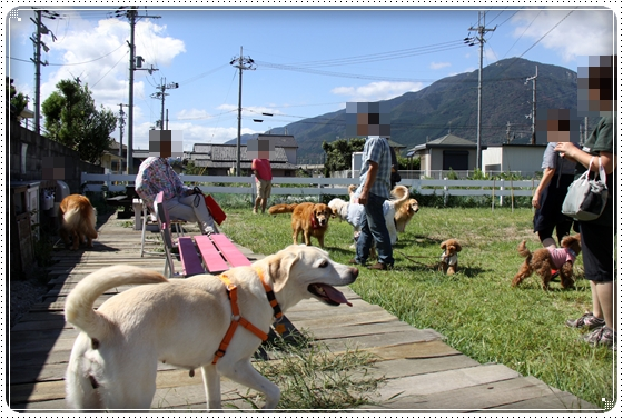 2010,9,26琵琶湖<br /><br /><br /><br />3