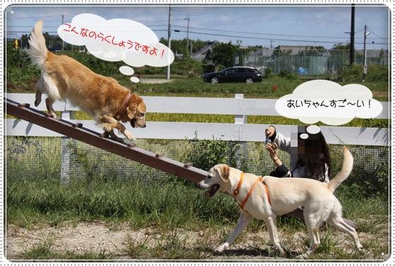2010,9,27琵琶湖2