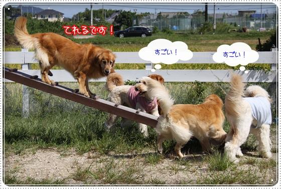 2010,9,27琵琶湖16