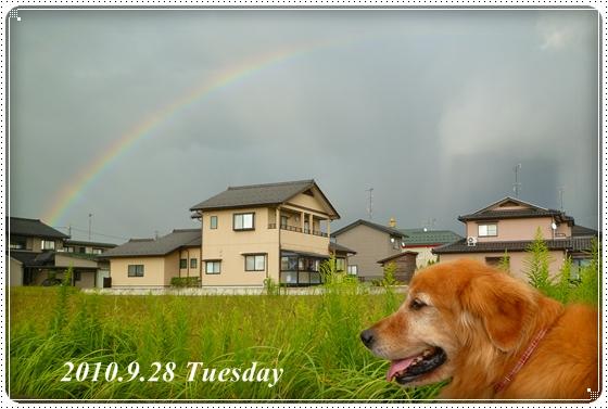 2010,9,30お散歩4