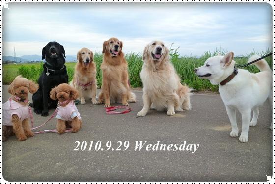 2010,9,30お散歩7