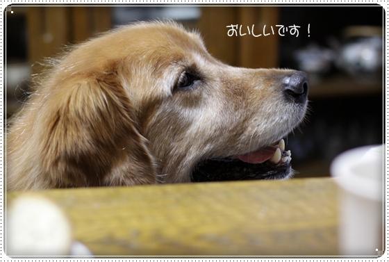 2010,10,4お散歩6